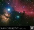 B33 - IC434 - NGC2024