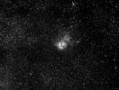 M 20 Trifida
