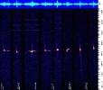 Spettroscopia e Radioastronomia
